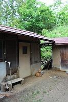 2014.6月7日、8日 大鹿村 042.jpg