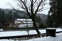 2014.12.3 4   福井 048.jpg