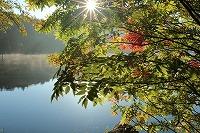 2015 9月 車山高原 飛鳥 185.jpg