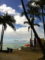 aroha.jpg