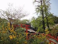 2013.4.19.20  京都 036.jpg