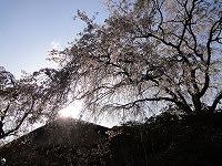 2013.4.19.20  京都 010.jpg